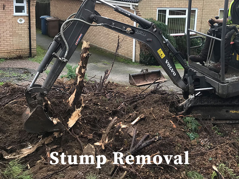 Stump Removal general